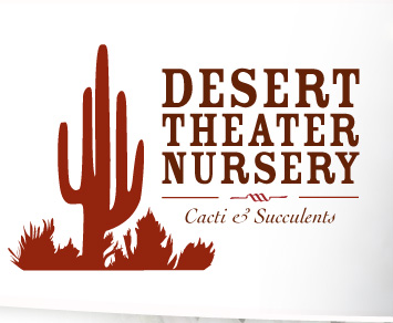 Desert Theater Cactus Nursery In San Go Escondido Cacti Drought Tolerant Plants County And Succulents